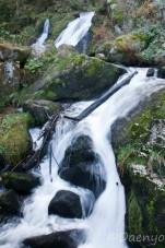 Triberger Wasserfälle, Schwarzwald