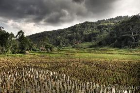 Tana Toraja, Sulawesi