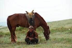 Mongolian Horserider