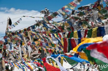 Prayer Flags, Khardung La