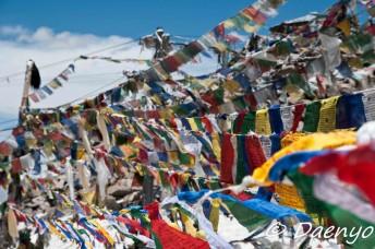 Prayer Flags, Khardung La