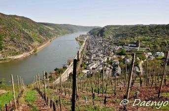 Rheingau
