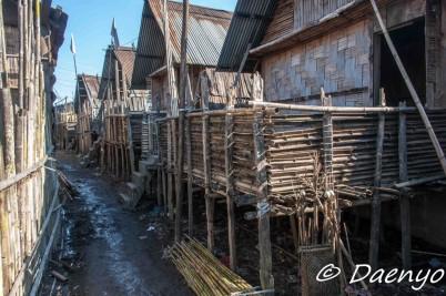Apatani Houses, Ziro (Arunachal Pradesh)