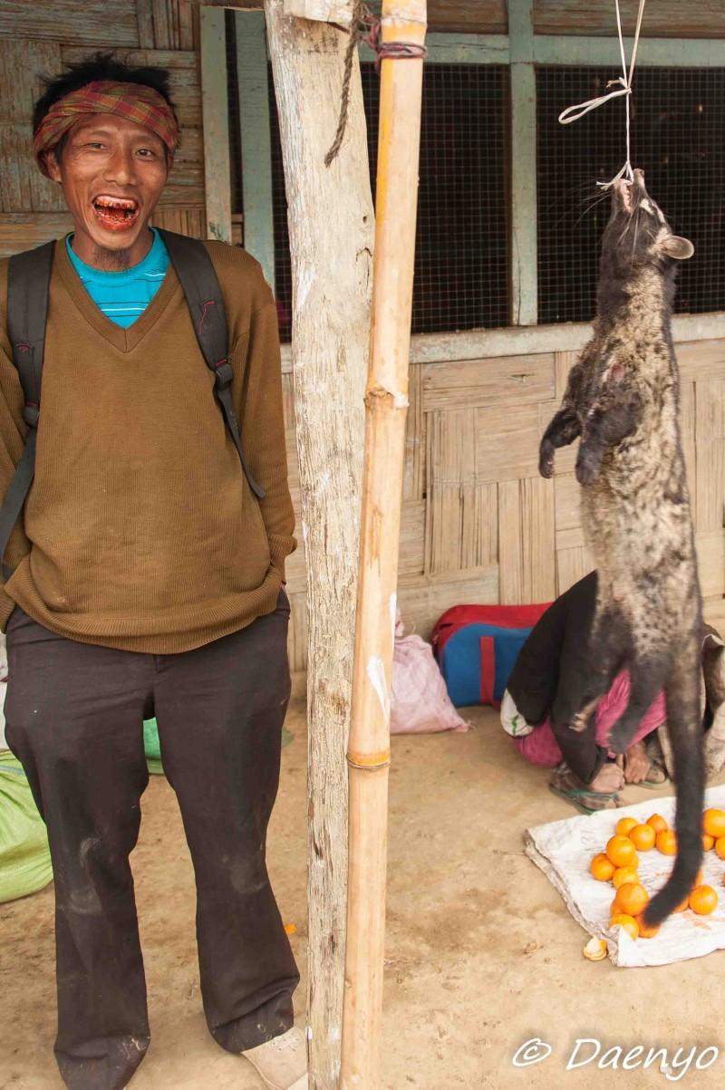 Dead Junglecat, Nagaland