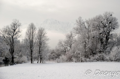 Winter in Bavaria