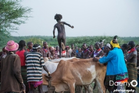 Omo Valley, Bulljumping Ceremony at Hamer tribe village