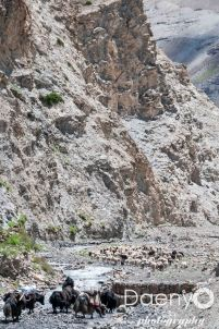 Tibet-13