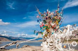 Tibet-17