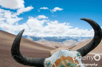 Tibet-25