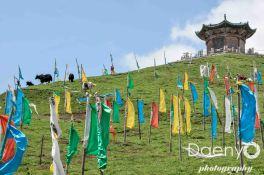 Tibet-9