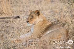 Tanzania Favs-18