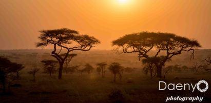 Tanzania Favs-7