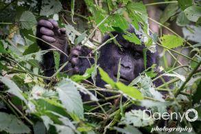 Uganda Favs-48