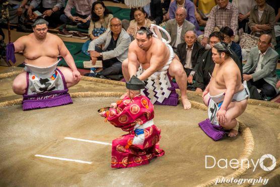 Edo Muesum and Sumo (17 von 22)