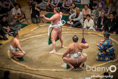 Edo Muesum and Sumo (18 von 22)