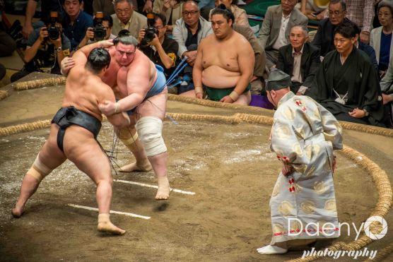 Edo Muesum and Sumo (19 von 22)