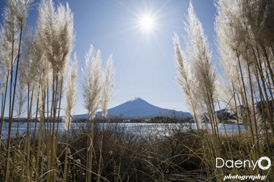 Fuji November (86 von 96)